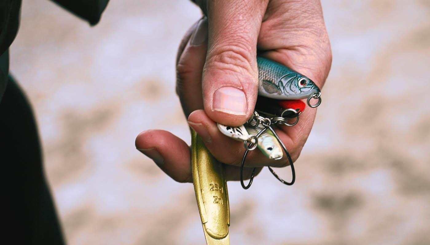 Bild einer Hand mit verschiedene Mefo-Ködern
