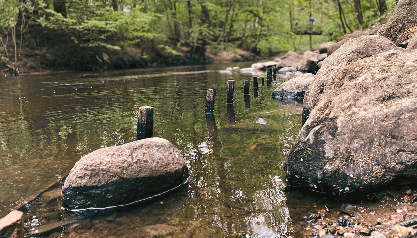 Bild von Steinen an einem Bachlauf