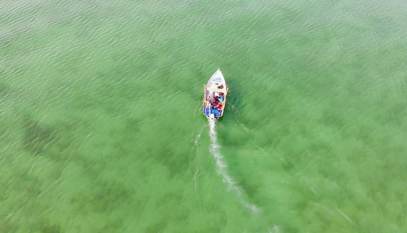 Bild von einem Boot aus der Vogelperspektive